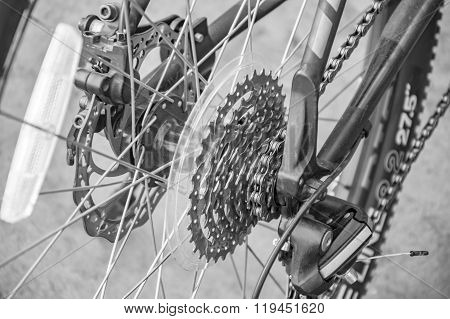 Bicylce Chain And Gear System