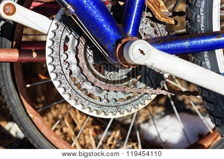 Bicycle Gearing