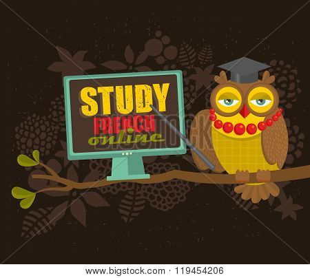 Owl on the tree. Study French concept.