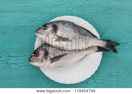 Raw Dorado Fish On Plate On Blue Background. Top View.