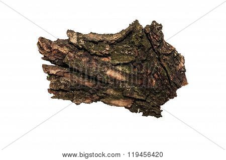 Piece Of Old Bark Or Rind.