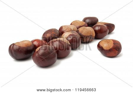 Aligned Horse Chestnuts