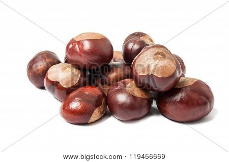 Bunch Of Horse Chestnuts