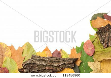 Frame Of Autumn Or Fall Leaves With Bark Or Rind