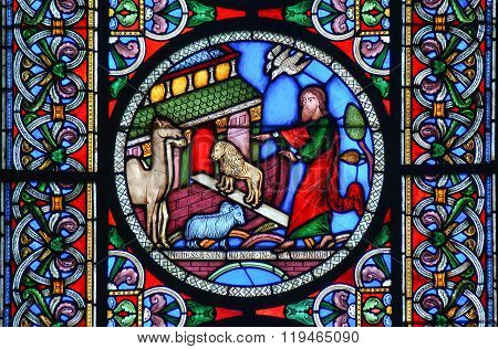 Stained Glass Window Of The Animals Going Into Noahs Ark