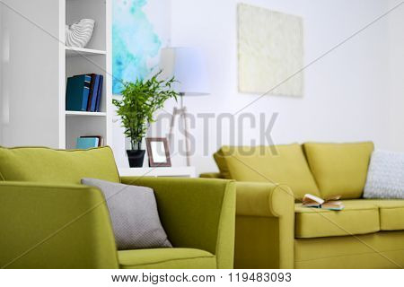 Living room interior with green furniture on light background