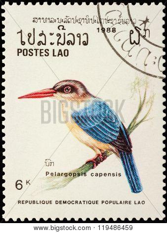 Stork-billed Kingfisher (pelargopsis Capensis) On Postage Stamp