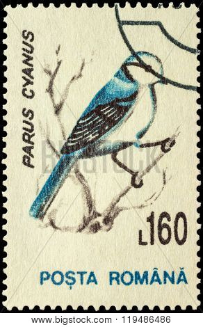 Bird Azure Tit (parus Cyanus) On Postage Stamp
