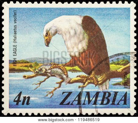 African Fish Eagle (haliaeetus Vocifer) On Postage Stamp