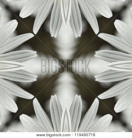 kaleidoscope, square, texture, pattern, symmetry, background, abstract, wallpaper, abstraction, text