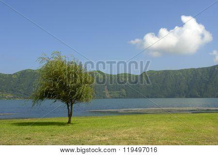 Azores sete cidades lake in sao miguel island, Portugal