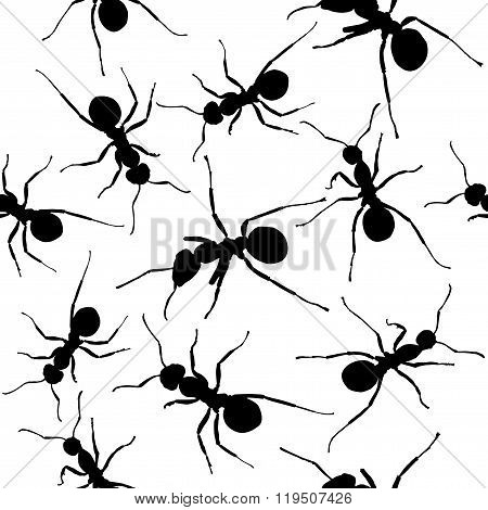 Ants. Seamless black and white vector background.