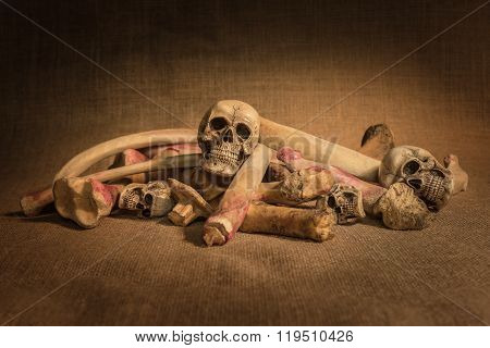 Still Life With Skulls And Bones