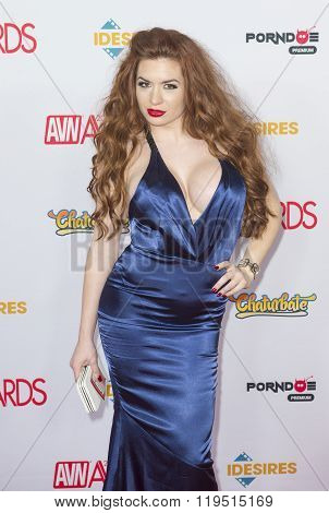 2016 Avn Awards