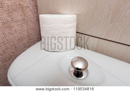 Hygienic Toilet Paper Roll In Wc
