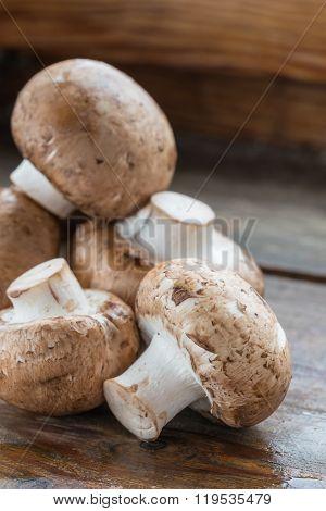 Brown Champignons Mushrooms