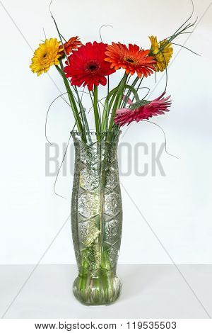 Gerberas In Vase On A White Background