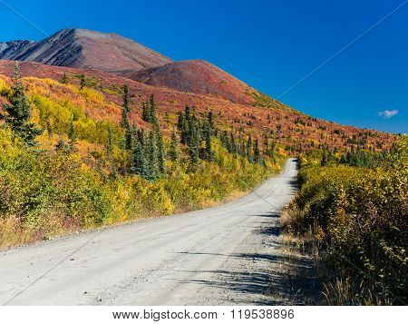 Denali Highway Fall Colors