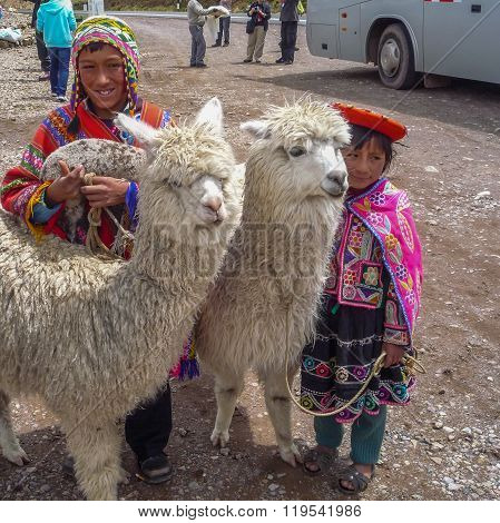 Unidentified children in traditional clothing with llamas