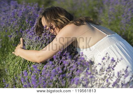 Bed Of Lavender