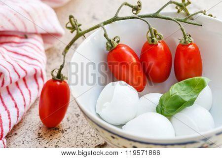 mozzarella and tomat