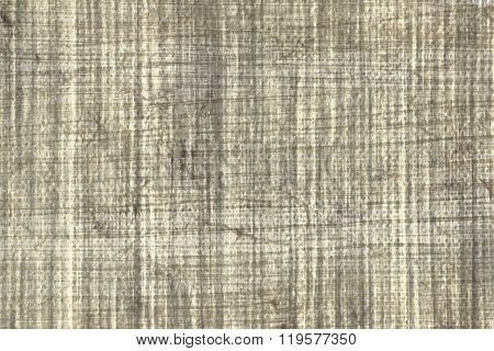 Texture of papyrus paper to use as a background.