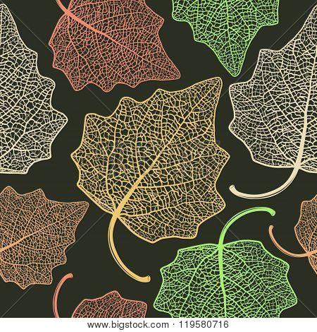 Poplar  Leaf Skeleton Pattern