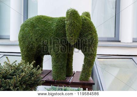 Live Elephant Statue Made Of Grass