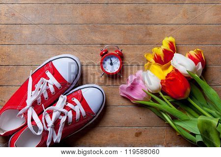 Bunch Of Tulips, Red Gumshoes And Clock Lying On The Table