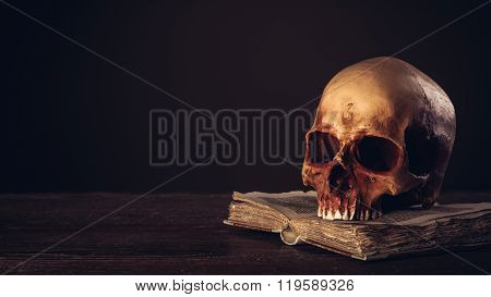 Human Skull On An Open Ancient Book