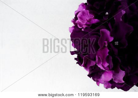 Purple Hortensia Border Close Up