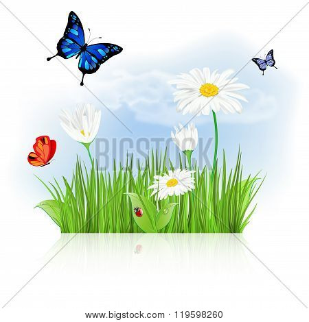 Nature Background With Grass, Flowers And Butterflies