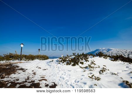 Beautiful winter sunny photo taken in Beskid mountains