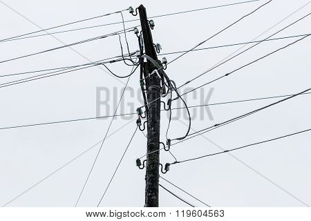 Top Of The Power Pole