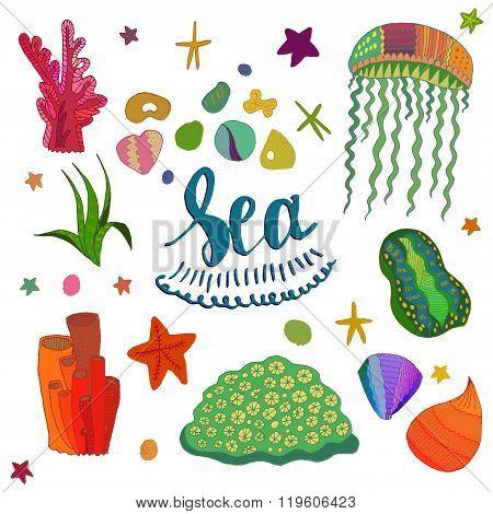 Colored Sea Elements
