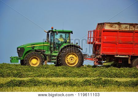 Harvester unloading into a tractor trailer. Combine harvester mows the field. Farming tractor collec