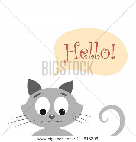 cat with HELLO
