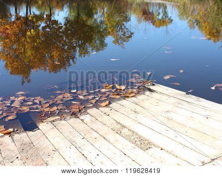 Coast of lake in the mellow autumn