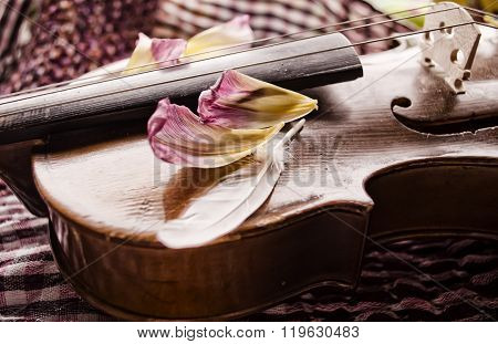 Still Life With Vintage Violin And Petals. Closeup Of Old Wooden Violin.