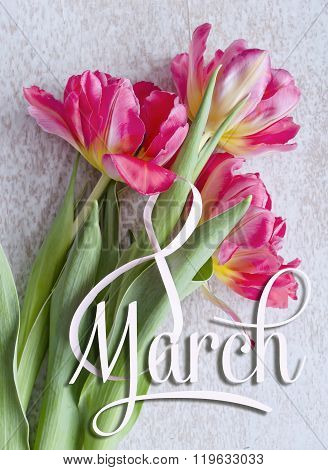 8 March, International Women's Day Greeting Card. White Figure Eight And Bouquet Of Three Red Tulips