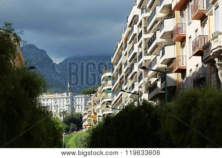 Amazing Urban Beauty