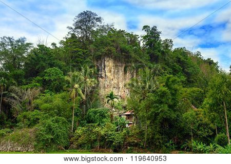 Suaya Is Cliffs Burial Site In Tana Toraja, South Sulawesi, Indonesia