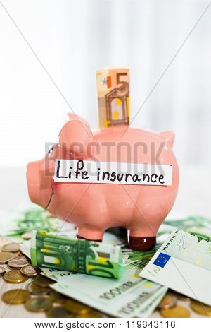Saving concept. Piggy bank with an inscription life insurance. Selective focus
