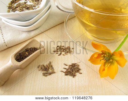 Fennel anise caraway tea