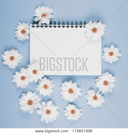 beautiful white flowers of chrysanthemum with note book