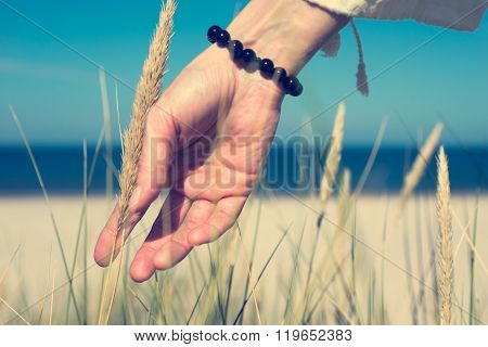Woman's Hand Sliding Through Dune Grass On Sunny Day