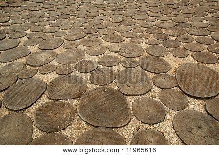 Image Of Crosscut Wood,