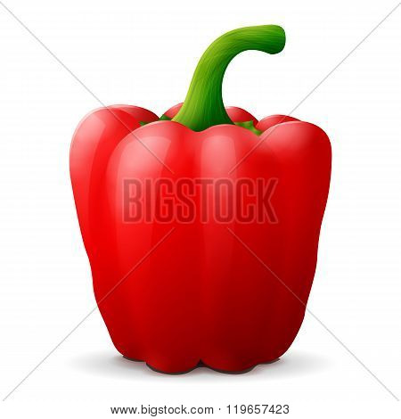 Red Bell Pepper With Tail Close Up