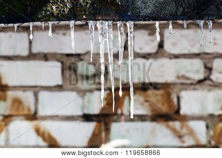 Few Icicles And Brick Wall On Background