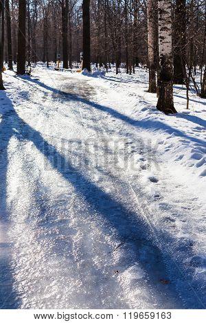 Slippery Pathway In Urban Park In Winter